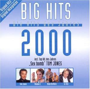 Big Hits 2000 - Die Hits des Jahres