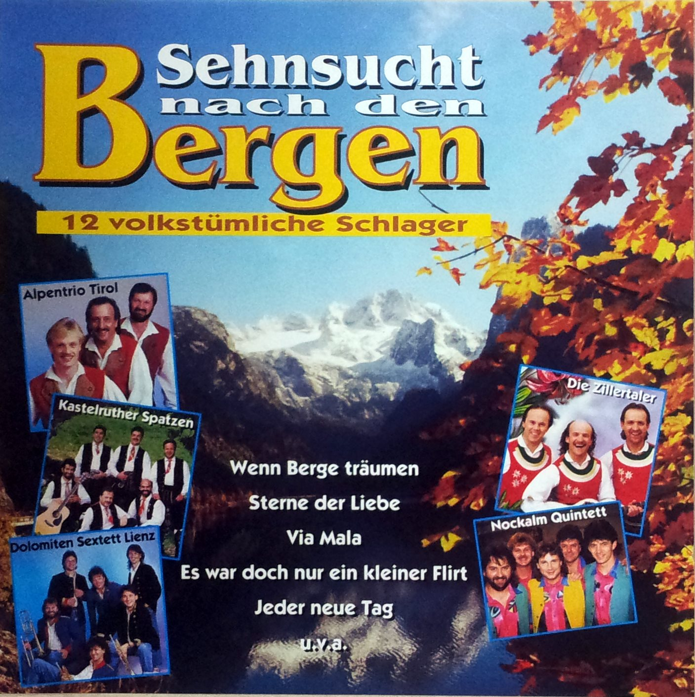 Sehnsucht nach den Bergen - 12 volkstümliche Schlager